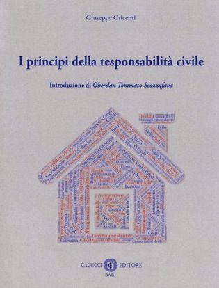 Immagine di I principi della responsabilità civile