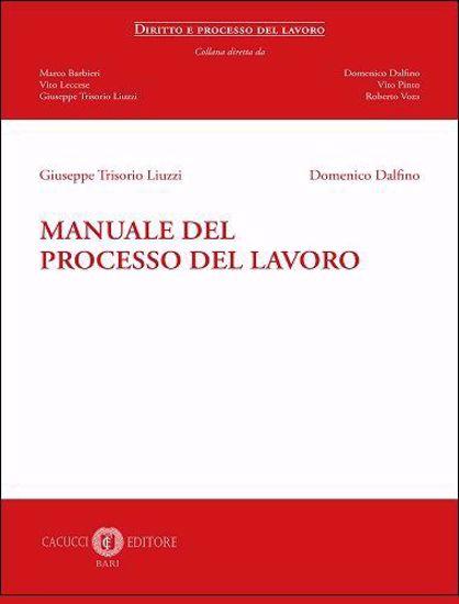 Immagine di 4 - Manuale del processo del lavoro